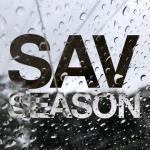 sav-season